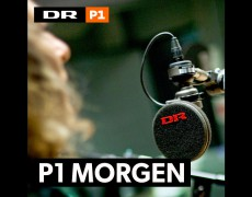 DR: P1 Morgen: 'Skal kønsforskelle udviskes eller blive?'Debat med professor Henrik Høegh-Olesen fra Århus Universitet